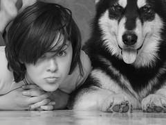 Hello, people (baleek) Tags: dog girl look animal nikon friendship malamute