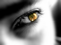 look....... (Mouin.M) Tags: lighting portrait bw blur macro eye colors look sepia photoshop effects gold blackwhite day eyelashes lumire yeux stare onwhite tones gaze regard