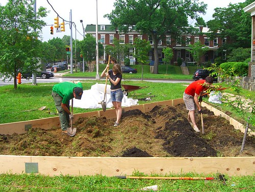 09 05 16 Tinges Commons garden planting 07.jpg