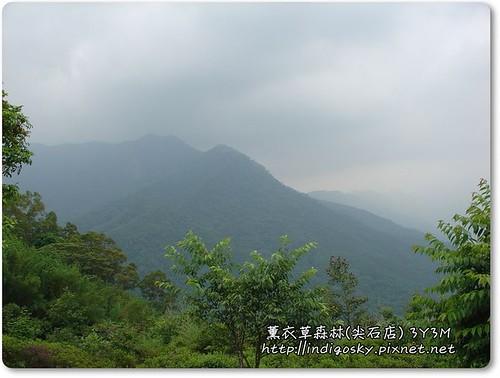 新竹薰衣草森林(尖石)-064