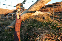 9 of 100 (lev) Tags: grass fence scotland gate nine rusty 9 rusted ropes heavy attached westernisles weight isleoflewis hebrides 1100 siabost shawbost personalchallenge norsemill