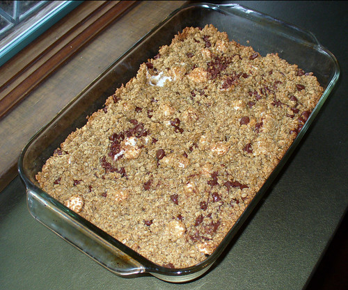 2009-05-27 - Chocolate Marshmallow Granola Bars - 0006