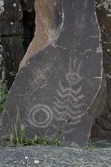 Columbia Gorge Petroglyphs