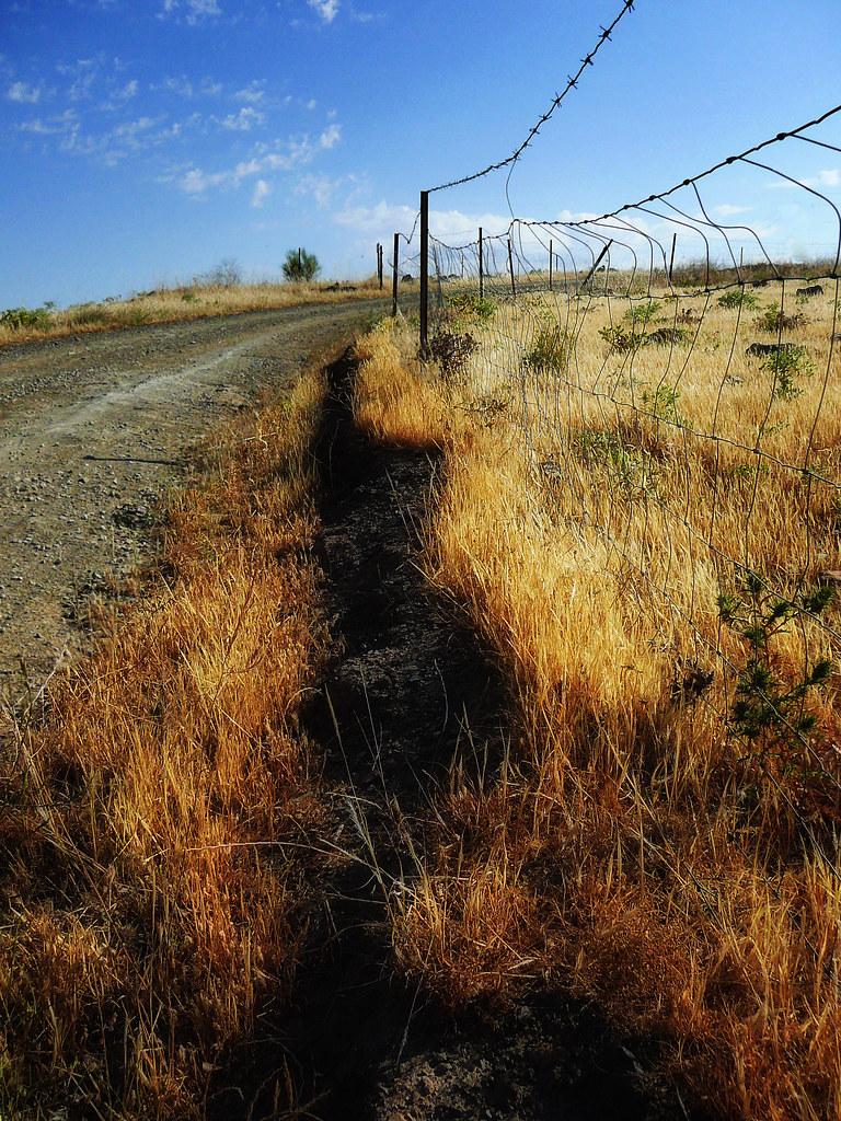 La Serena road III (La alambrada)
