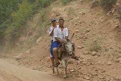 Donkey Riding (kezwan) Tags: cool donkey riding kezwan