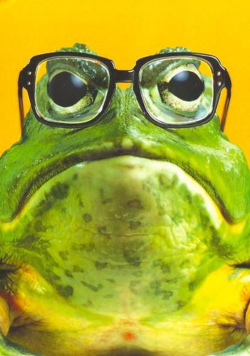 Bajka o dwóch żabach i ślimaku