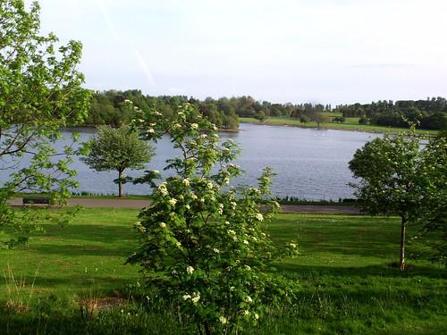 Hogganfield Lake