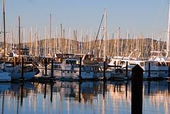 Late Afternoon at the Marina (dphock) Tags: california reflection water lines marina boats hero winner sausalito abigfave nikond80