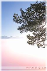 over the foggy valley ... (G.Hotz Photography (busy as a bee =)) Tags: portrait people food lake fog photography austria dornbirn feldkirch österreich stillleben foto fotograf fotografie hard bregenz gerald photograph bodensee constance bludenz oesterreich vorarlberg produkt hotz hochzeitsfotograf ondarena fotolyst