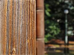 Wood texture (tanakawho) Tags: wood tree texture garden dof bokeh pillar line lamppost weathered 旧岩崎邸 tanakawho