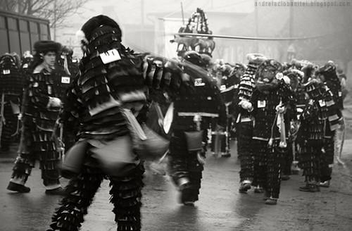 carnavalul lolelor (II)