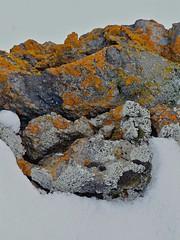 SNB10937.JPG (Winfried Veil) Tags: schnee orange snow nature rock island grey iceland veil natur grau fels winfried godafoss mobilew winfriedveil