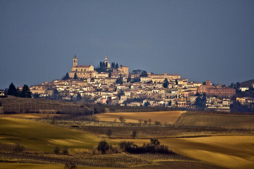 Vignale Monferrato #3
