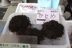 kajime-some kind of seaweed