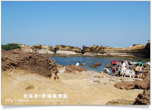 【北海岸一日遊】野柳風景區~野柳地質公園一日遊