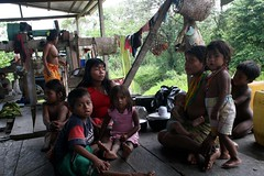 UNHCR News Story: Hundreds of indigenous Embera people flee from armed group in Colombia (UNHCR) Tags: news latinamerica children colombia refugee flight jungle embera unhcr indigenous amazonas displacement newsstory idps forcedmigration acnur ethnicgroup armedconflict ancestrallands inigenouscommunity collectiveterritory baudoriver