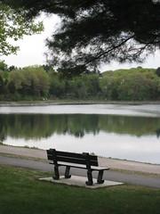 Tranquility (historygradguy (jobhunting)) Tags: reflection water boston bench ma empty massachusetts branches newengland reservoir winner mass chestnuthill bostonist herowinner