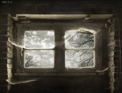 the portal to a parallel world (moggierocket) Tags: old trees light house abandoned window fairytale clouds neglect dark alone view bare empty bricks dream surreal nopeople spooky forgotten mysterious horror attic inside unreal deserted spiderwebs cobwebs lookingout fivestarsgallery
