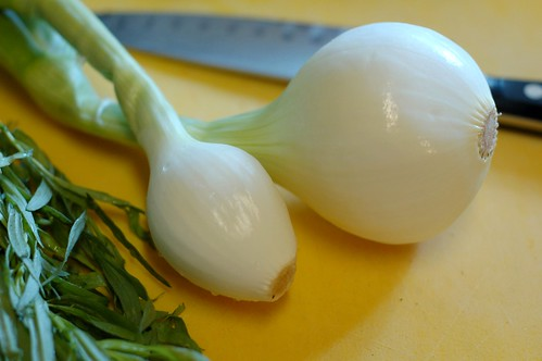 Fresh onions with tarragon