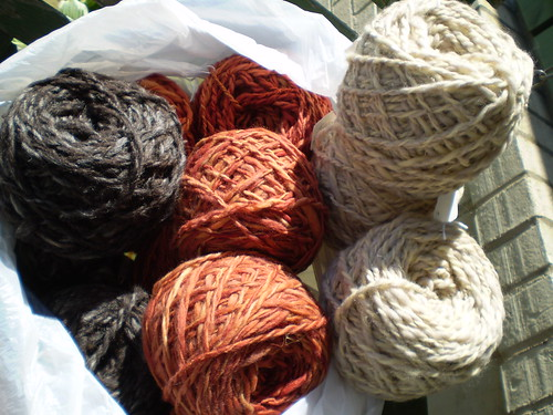 Delightful New Yarns from Ann!