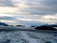 The landscape.. (Suedehead) Tags: lighthouse beagle argentina ushuaia island tour sealion 2009 channel leseclaireurs