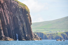 Dingle Bay (Frankensteinnn) Tags: ireland sea green water grass bay dolphin dingle hills fungi