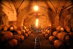 My dream wine cellar (GlossyEye.) Tags: travel love beautiful nikon treasure wine barrel vine winery 55mm passion vino nikond40 undergroundcellar picnikorpicnic