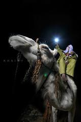 I can Touch the moon (Khairy.ms) Tags: africa moon girl female femme culture arabic explore arab tradition tribe jewels ethnic libya tripoli tribo ghadames tribu arabo libia libye ghadafi khairy   arabicart libyanman ribia liviya khadafi  libija    libyana     lbija  lby libja livi  libyaart