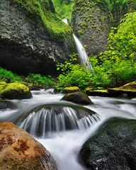 Ponytail Spring (Michael Bollino) Tags: green nature oregon creek outside flow waterfall spring nikon northwest hiking falls foliage greens ponytail d300 michaelbollino