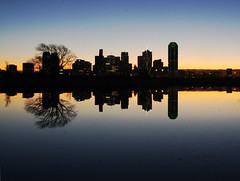 A Tree Grows in Dallas (TPorter2006) Tags: silhouette skyline sunrise dawn dallas interestingness interesting downtown cityscape texas grandmother january medal explore hero winner halloffame 2009 hof pinnacle northtexas bigmomma explored abigfave thechallengegame challengegamewinner pfogold tporter2006 pfoisland07a trammelcrowpark herowinner thepinnaclehof tphofweek48 ultraherochallenge
