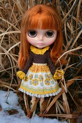 Mina (cybermelli) Tags: winter snow monkey doll dress skirt blouse blythe prima dolly takara squeaky rbl squeakymonkey aubrena