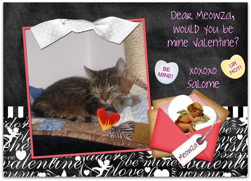 sally valentine meowza