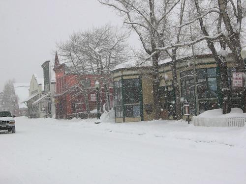 Snowy Elk Avenue