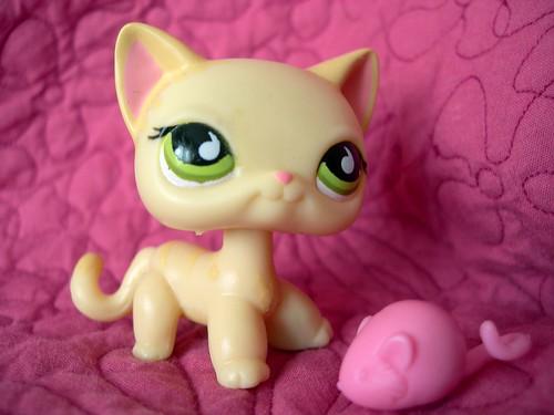 Little Pet shop, Cute Cat by rosaperfecto.