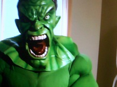 hulk (stuntwood) Tags: fotos