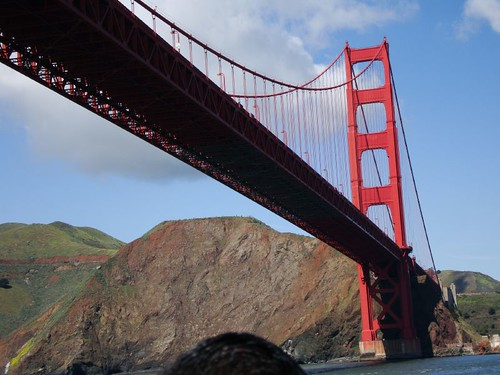 Riding under the Golden Gate bridge