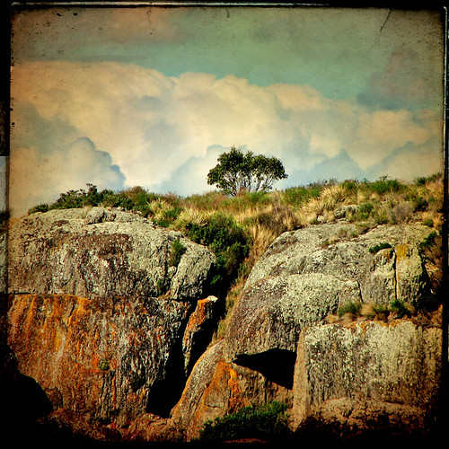 Xenoliths #2