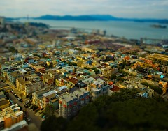 The Mini-Land of San Francisco (Stuck in Customs) Tags: ocean sanfrancisco california street city travel houses urban usa rooftop scale water architecture toy photography bay town miniature model nikon san francisco colorful apartments cityscape photographer stuck little townhouse shift optical mini illusion tiny bayarea pro top100 tilt westcoast engineer hdr mock customs miniture tiltshift miniland stuckincustoms forupload treyratcliff