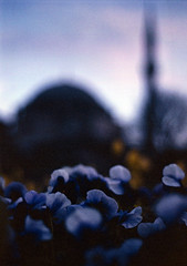 leaving istanbul II (ali khurshid) Tags: bridge film turkey 50mm daylight nikon fuji tulips turkiye slide istanbul iso velvia 100 nikkor f18 f5 galata eminonu