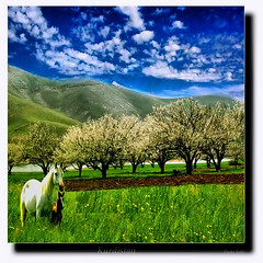 Kurdistan kurd (Kurdistan Photo ) Tags: friends collection geographic naturesfinest blueribbonwinner supershot photospace abigfave impressedbeauty aplusphoto flickrdiamond thatsclassy kurdistan4all excapture  goldstaraward kurdistan2008 travelandscapes rubyphotographer sefti goldenheartaward flickraward kurdistan2009