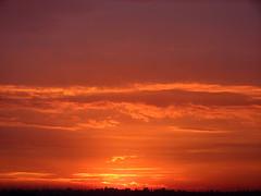 (J Felipe) Tags: brazil sky cloud sun sol brasil soleil tramonto nuvola sopaulo himmel wolke cu prdosol ciel cielo sole nuage nuvem sonne ocaso nube coucherdesoleil solnedgang wolk solen juanfelipegonzalez
