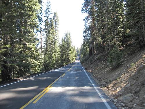 Climbing Tioga Road