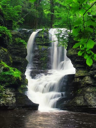 フリー画像| 自然風景| 滝の風景| 森林/山林| アメリカ風景|       フリー素材|