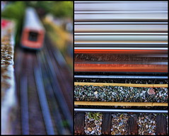 the train blurs:  167/365 (helen sotiriadis) Tags: orange motion blur yellow train canon diptych published dof metro bokeh stones gray tracks athens depthoffield greece 365 piraeus canonef50mmf14usm kifissia marousi   canoneos40d nerantziotissa     toomanytribbles