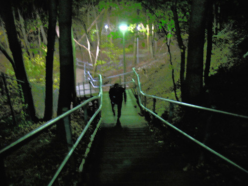 Walking Up the Stairs from the Ravine, Heath Street