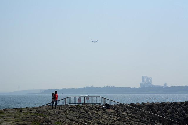 湾奥の堤防