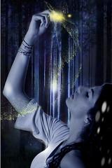 It's a Kind of Magic. ([Mr] Catoz. ) Tags: blue trees light alberi forest stars photoshopped magic trigger magia foresta polveredistelle nikonsb28 canoneos5dmarkii tamron70200mmf28