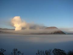 Mt Bromo (smoking) and Mt Batok (Sparky the Neon Cat) Tags: asia indonesia indonesian java javanese bromo semeru bromotenggersemeru national park tengger volcano mount mt massif batok mist smoke steam