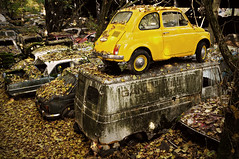 Best place - Kaufdorf car cemetery - Switzerland (PascalBo) Tags: autumn fall abandoned car automne outdoors schweiz switzerland nikon europe suisse voiture fiat500 cimetire abandonn d300 carcemetery autofriedhof pave 123faves kaufdorf pascalboegli