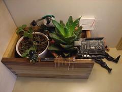 DIY a Standalone Arduino mini_1